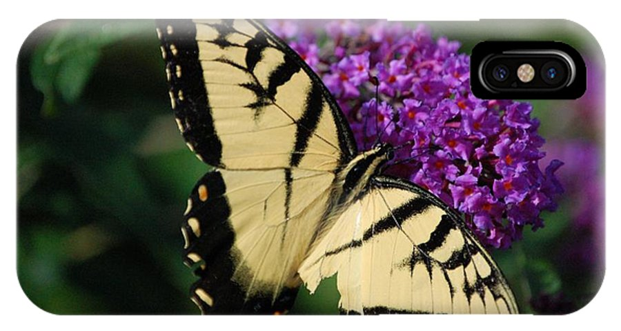 Butterfly IPhone X Case featuring the photograph Nothing Is Perfect by Debbi Granruth
