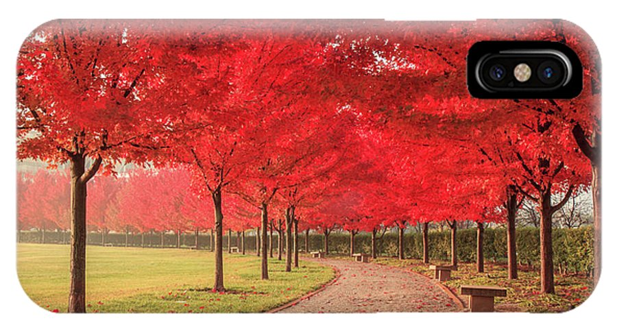 St. Louis IPhone X Case featuring the photograph October Dream by Scott Rackers
