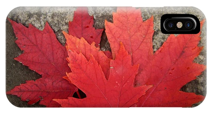 Canadian Symbols IPhone X Case featuring the photograph Oh Canada by Reb Frost