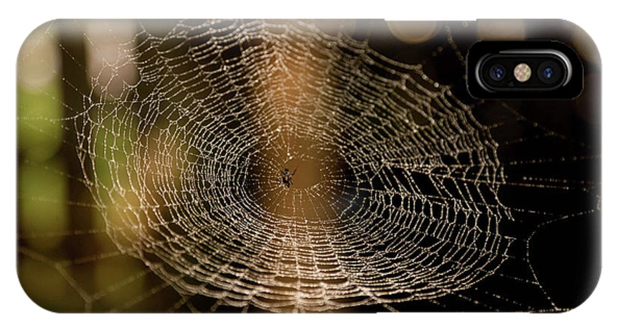 Spider Web IPhone X Case featuring the photograph Oh What Tangled Webs.... by James Fitterer