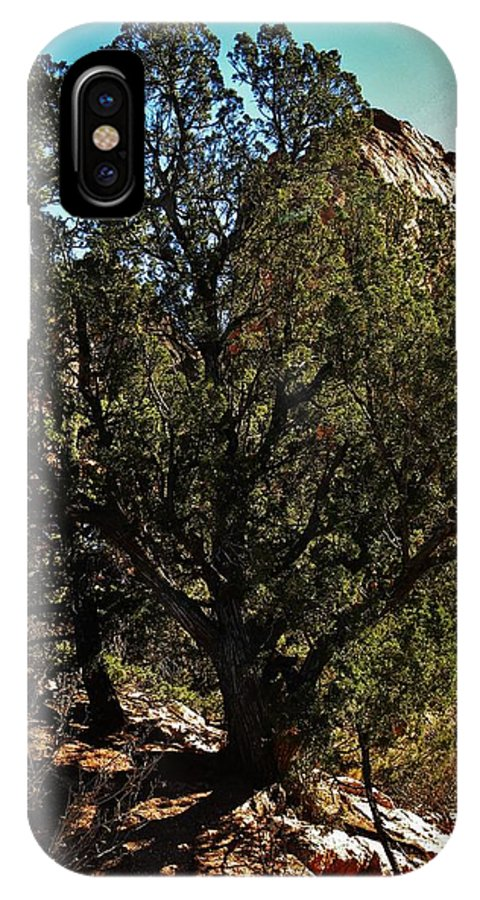 Colorado IPhone X Case featuring the photograph Old Juniper by CL Redding
