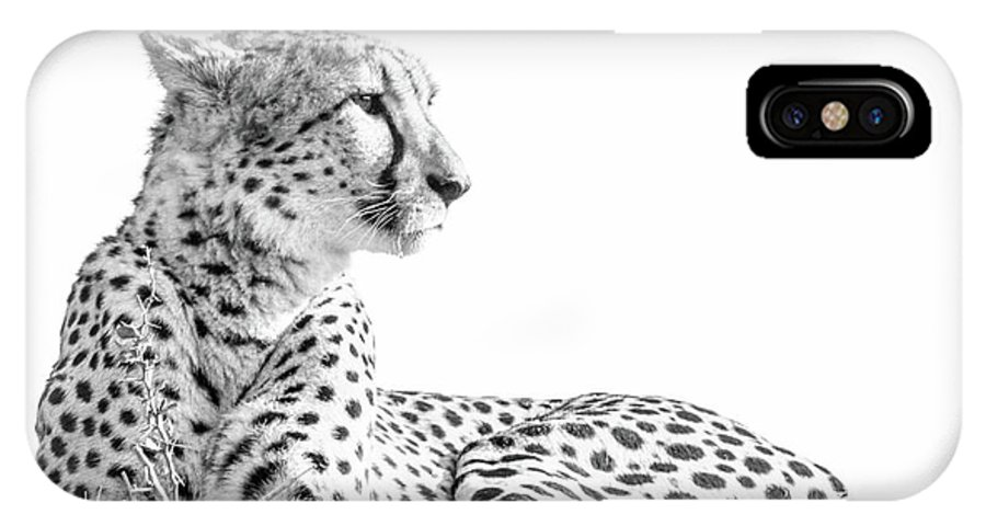 Cheetah IPhone X Case featuring the pyrography On The Lookout by Hislightrq
