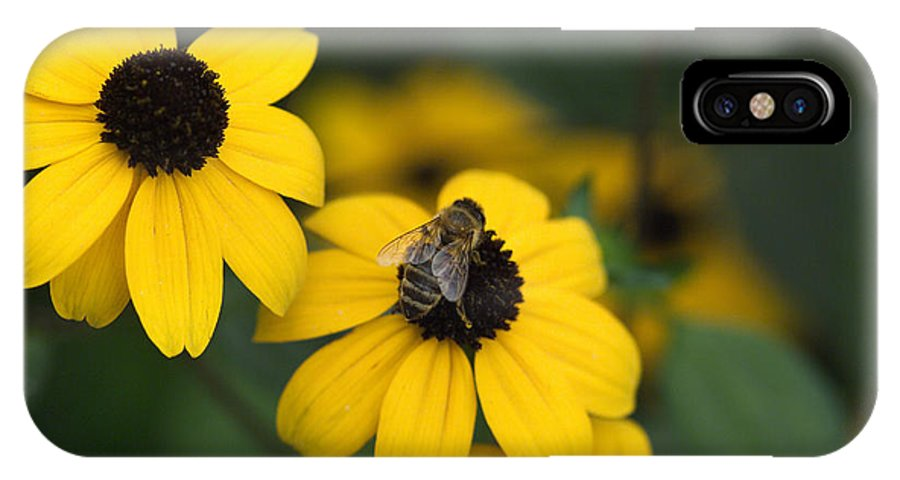 Yellow IPhone X Case featuring the photograph One bee over the flower's nest by Adrian Bud