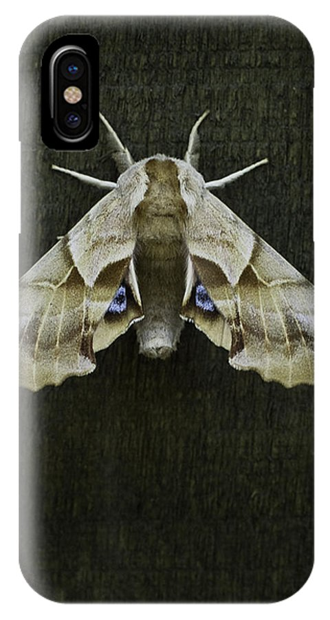 Moth IPhone X Case featuring the photograph One Eyed Sphinx Moth by Herman Robert