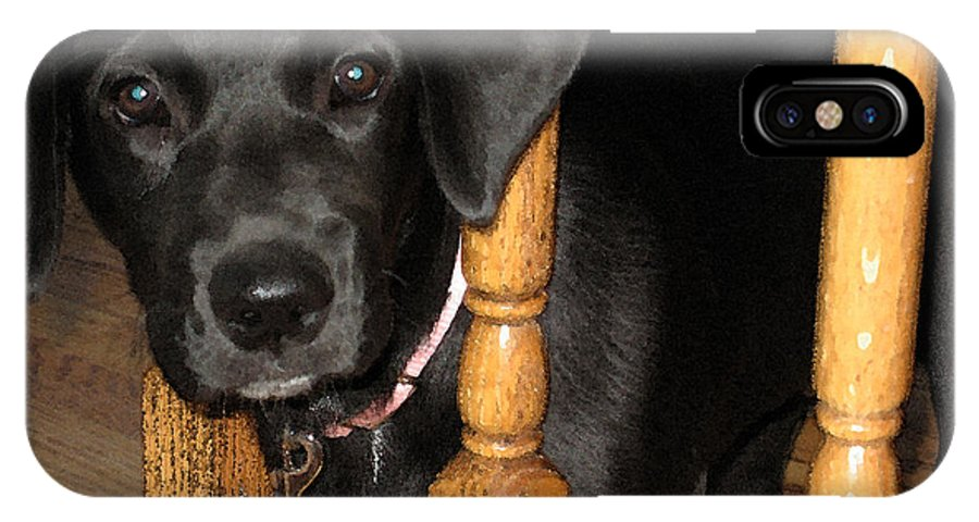 Dog IPhone X Case featuring the photograph One Way Only by Rhonda Chase