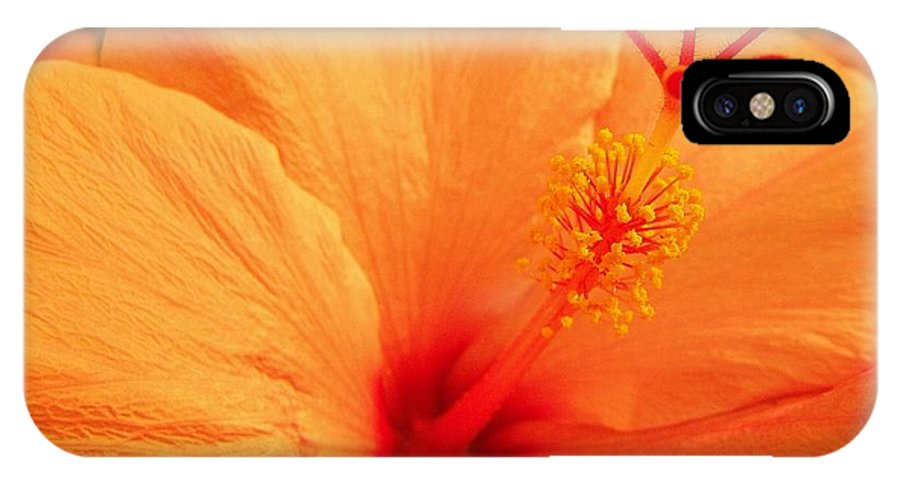 Floral IPhone X Case featuring the photograph Orang I Pretty by Florene Welebny