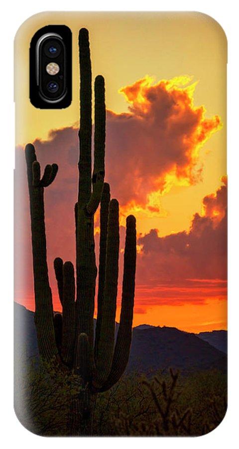 Saguaro Sunset IPhone X Case featuring the photograph Orange Beautiful Sunset by Saija Lehtonen