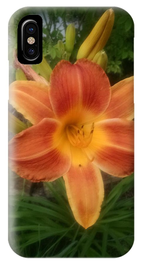 Orange IPhone X Case featuring the photograph Orange Delight by Connie Young