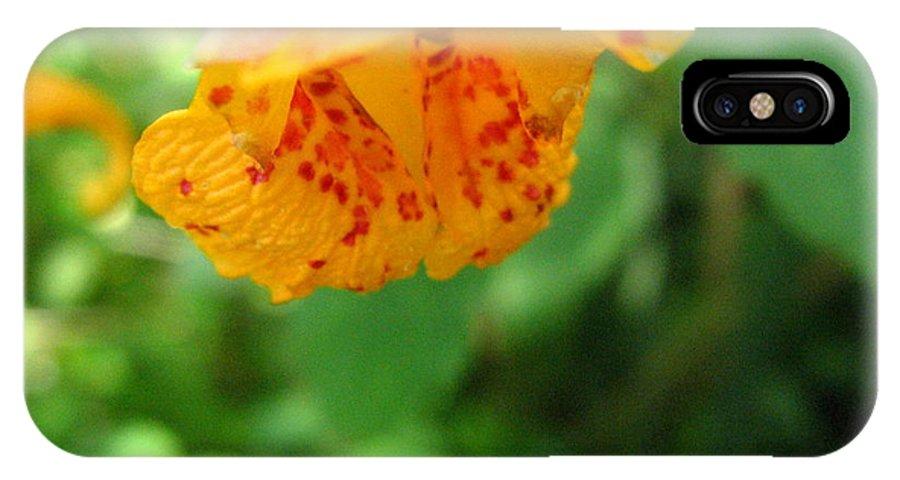 Flower IPhone X Case featuring the photograph Orange Flower by Devorah Shoshanna