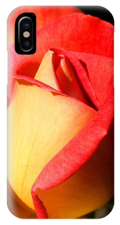 Orange Rosebud IPhone Case featuring the photograph Orange Rosebud by Ralph A Ledergerber-Photography