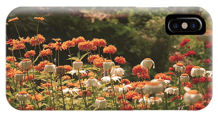 Flowers IPhone X Case featuring the photograph Orangeade by Aimelle