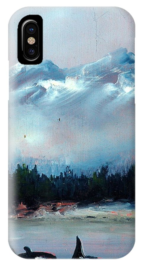 Ocean IPhone Case featuring the painting Orca by Sally Seago