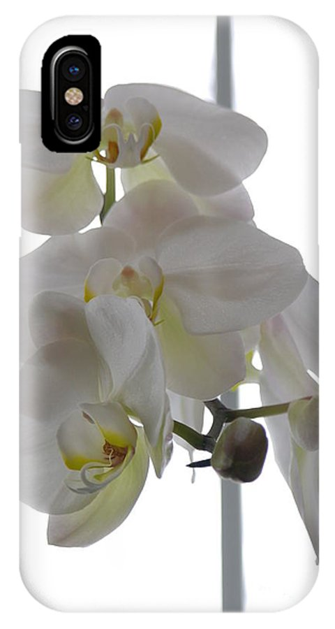 Orchid IPhone X Case featuring the photograph Orchid - 101 by David Bearden