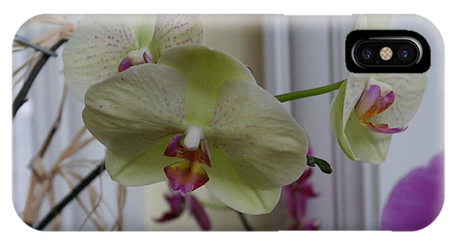 Orchid IPhone X Case featuring the photograph Orchid - 103 by David Bearden