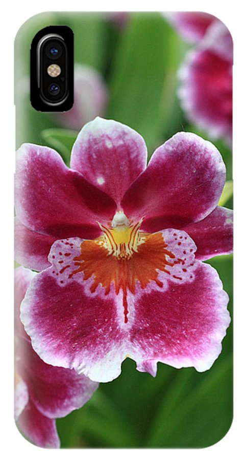 Orchid IPhone X Case featuring the photograph Orchid 11 by Pierre Leclerc Photography