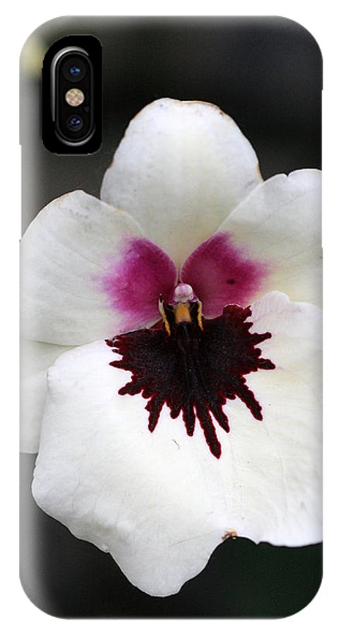 Orchid IPhone X Case featuring the photograph Orchid 2 by Pierre Leclerc Photography
