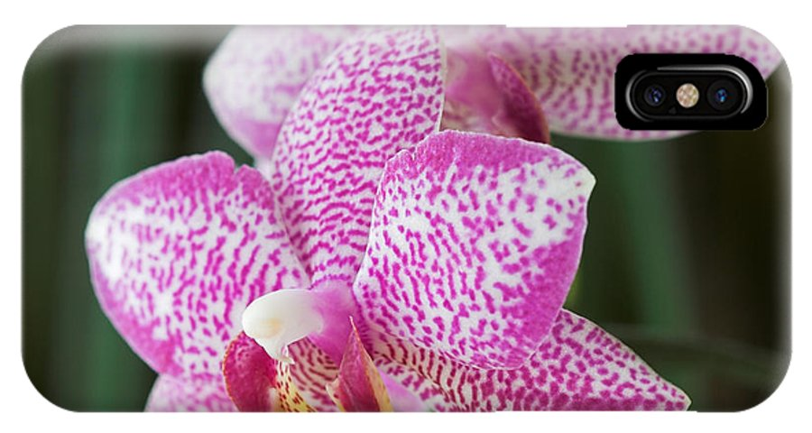 Orchid IPhone X Case featuring the photograph Orchid 20 by Pierre Leclerc Photography
