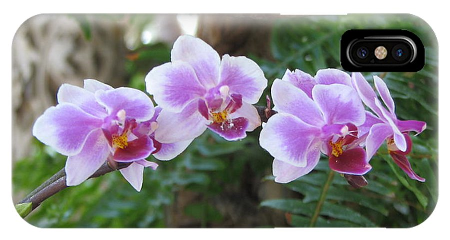 Orchid IPhone X Case featuring the photograph Orchid 3 by David Dunham