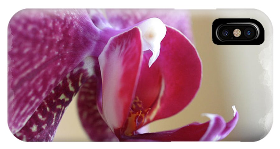Orchid IPhone X Case featuring the photograph Orchid 4 by David Bearden