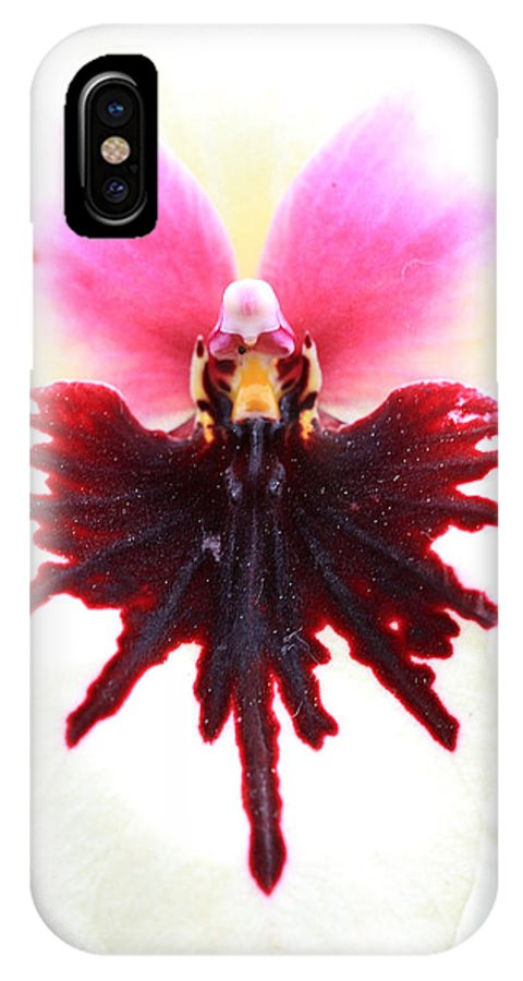 Orchid IPhone X Case featuring the photograph Orchid 5 by Pierre Leclerc Photography