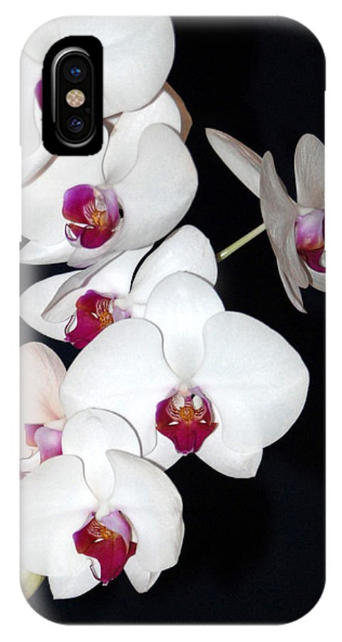 Flowers IPhone X Case featuring the photograph Orchid Cluster by Margaret Fortunato