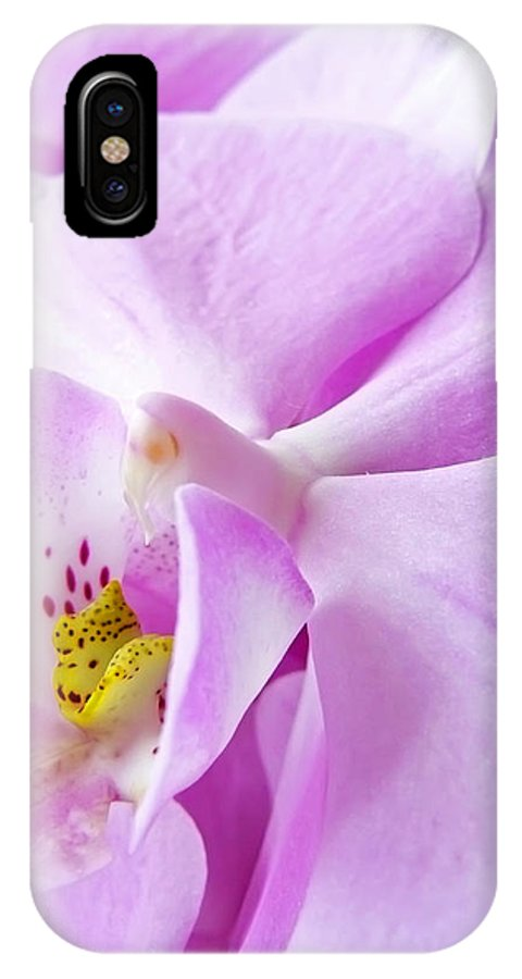 Orchid IPhone X Case featuring the photograph Orchid by Daniel Csoka