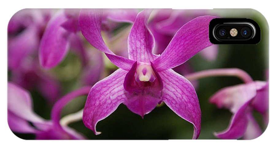 Orchid IPhone Case featuring the photograph Orchid by Heather Coen