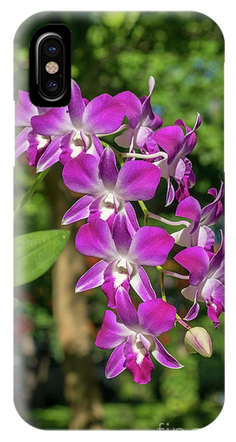 Orchid IPhone X Case featuring the photograph Orchid by Que Siam