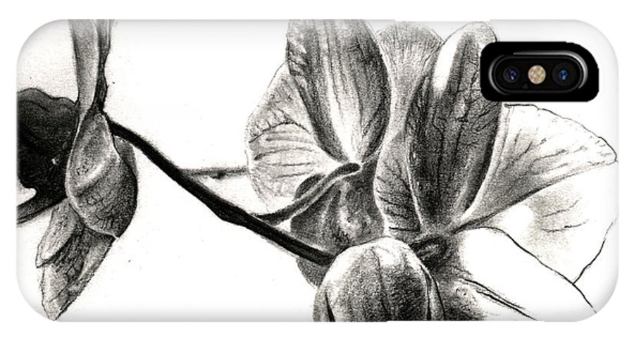 Lin Petershagen IPhone X Case featuring the drawing Orchids In Black by Lin Petershagen