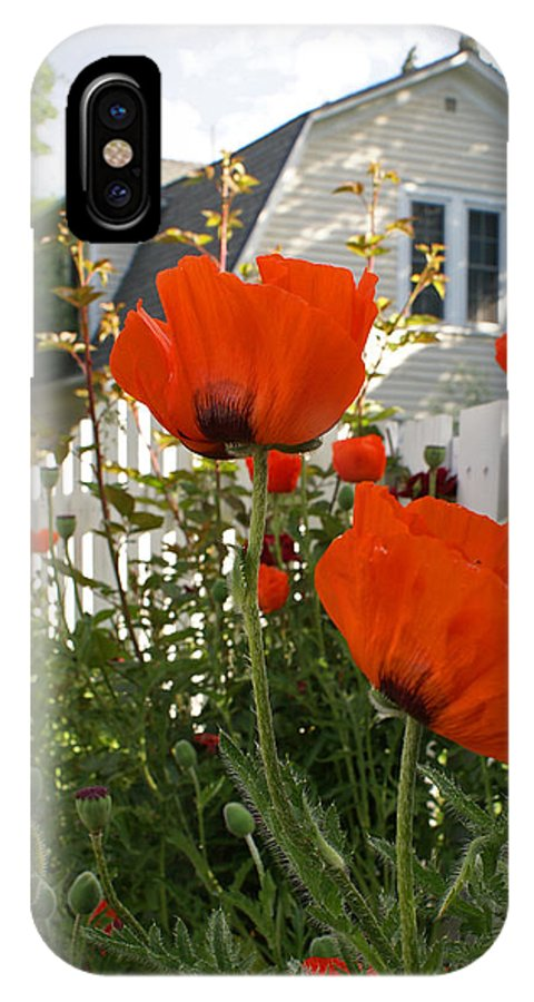 Poppies IPhone X Case featuring the photograph Oriental Poppies by Heather Coen