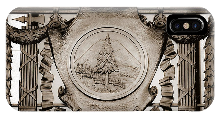 Washington IPhone X Case featuring the photograph Ornamental Bronze 3 Of 3 by Larry Keahey