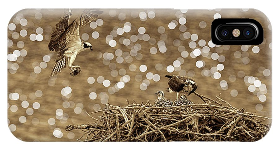 Osprey IPhone X Case featuring the photograph Osprey Coming In With Goodies by Dan Friend
