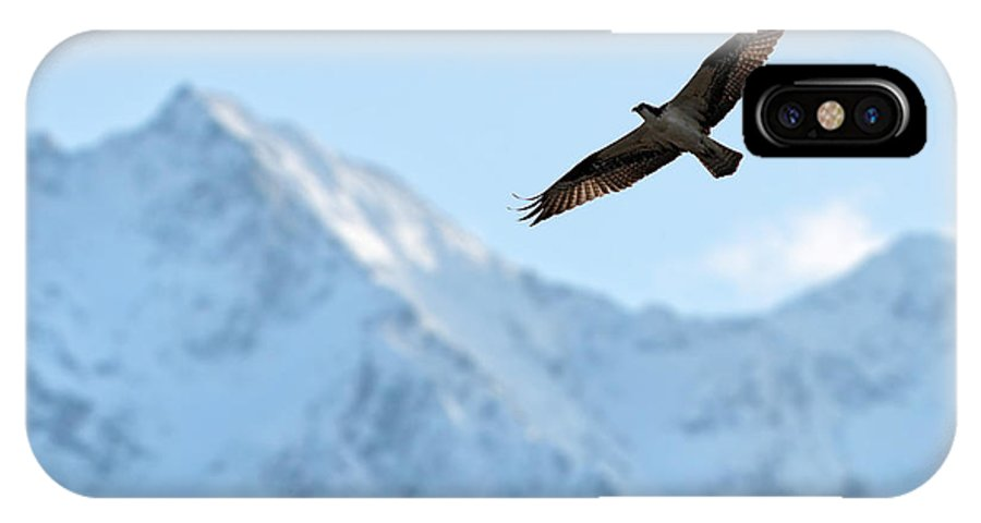 Osprey IPhone X Case featuring the photograph Osprey Over Mt Currie Pemberton B.c by Pierre Leclerc Photography