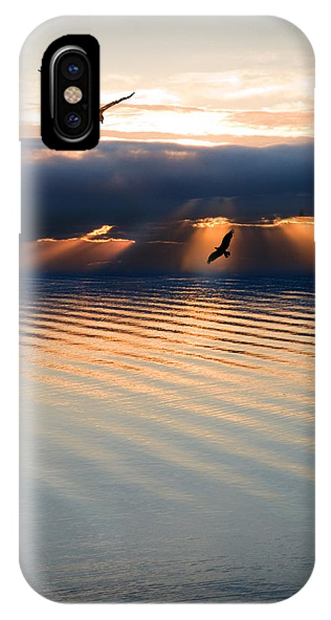 Osprey IPhone X Case featuring the photograph Ospreys by Mal Bray