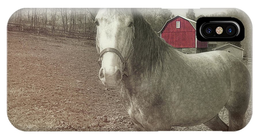 Horse IPhone X Case featuring the photograph Out To Pasture by JAMART Photography