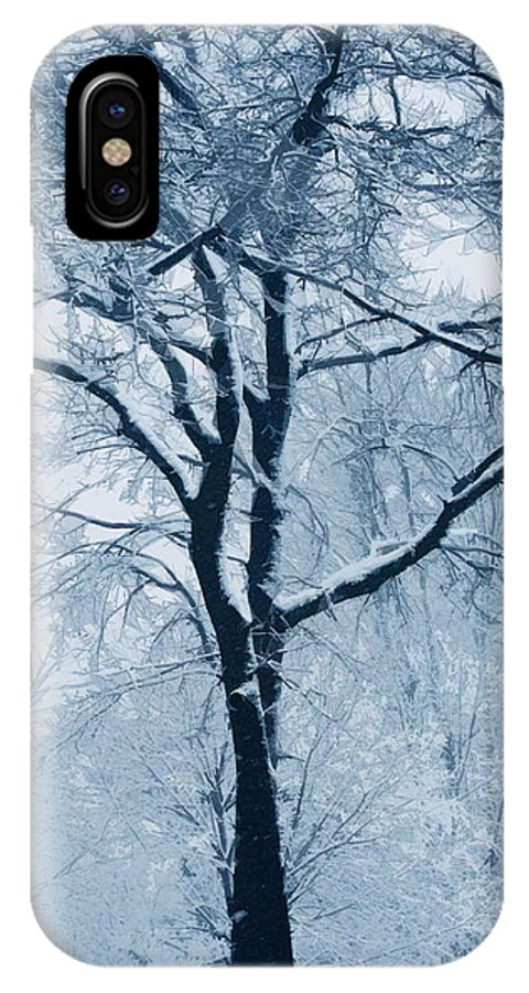 Trees IPhone X Case featuring the photograph Outside My Window by Linda Sannuti