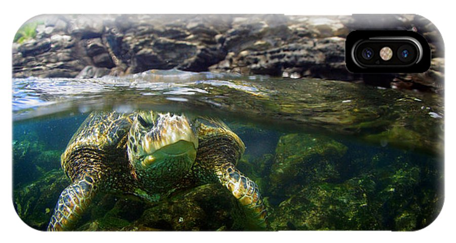IPhone X Case featuring the photograph Over Under Honu by Todd Hummel