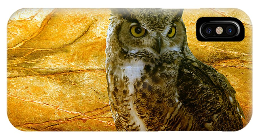 Animal IPhone X Case featuring the photograph Owl by Teresa Zieba