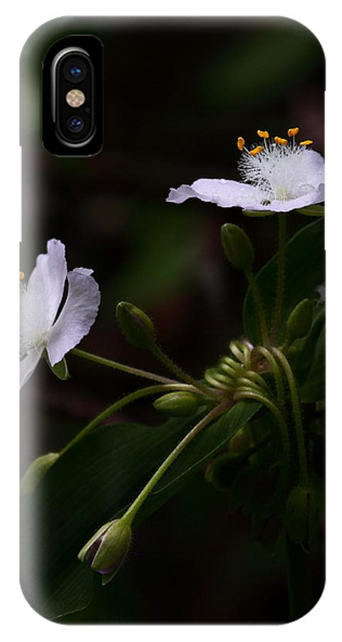 Ozark Spiderwort IPhone X Case featuring the photograph Ozark Spiderwort Near Broadwater Falls by Michael Dougherty