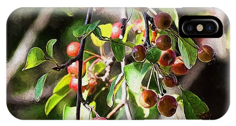 Berries IPhone X Case featuring the painting Painted Berries by Theresa Campbell