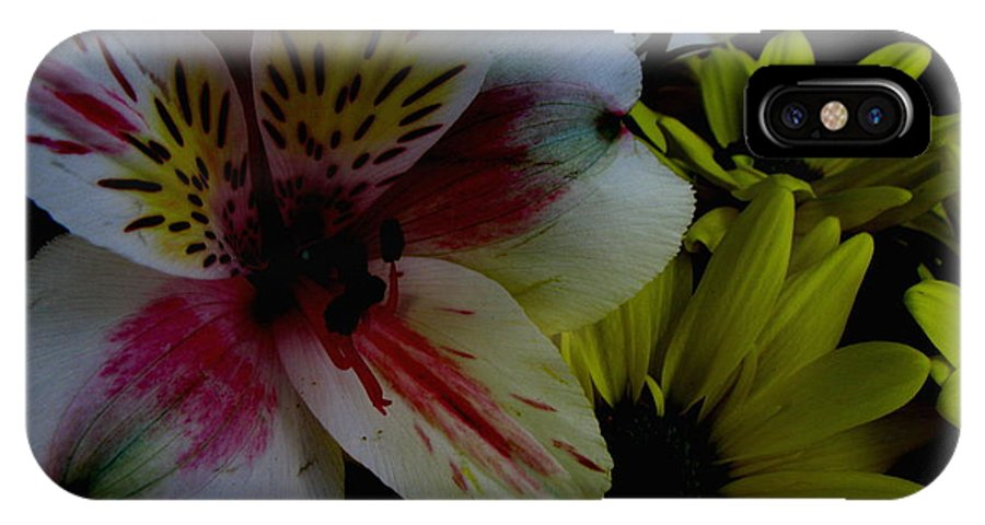 Art For The Wall...patzer Photography IPhone X Case featuring the photograph Painted Lily by Greg Patzer