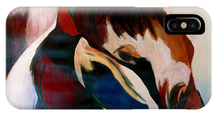 Colorful.pony Framed Prints IPhone X Case featuring the painting Painted Pony by Donna Steward