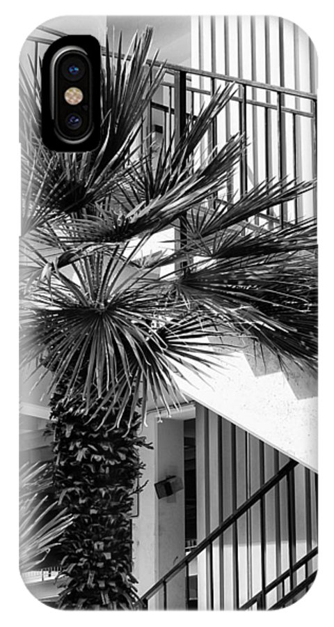 Palm IPhone X / XS Case featuring the photograph Palm Chevron Palm Springs by William Dey