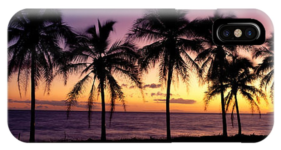 B1538 IPhone X Case featuring the photograph Palm Horizons by Bill Schildge - Printscapes