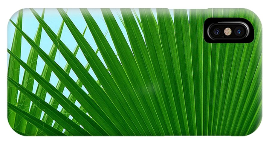 Palm IPhone X / XS Case featuring the photograph Palm Leaves by Susan Wall