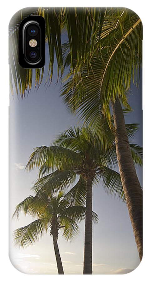 Palm Trees IPhone X Case featuring the photograph Palm Trees At Sunset by Sven Brogren