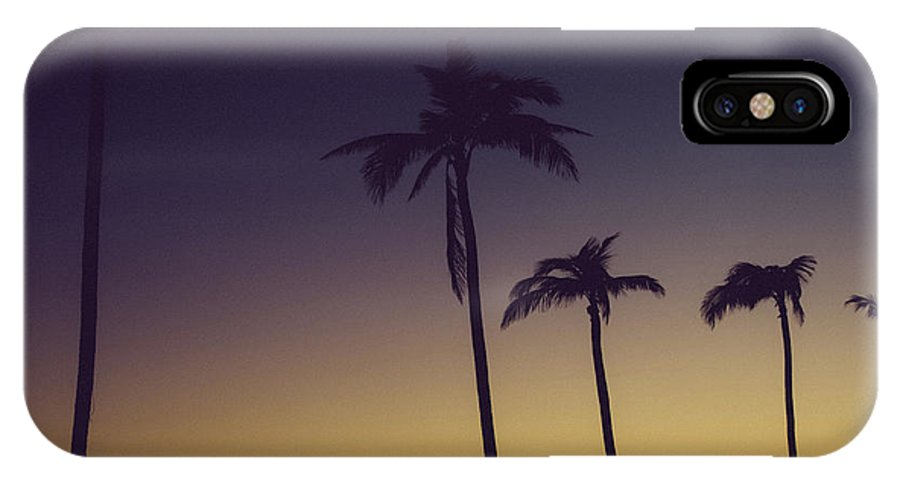 Vacation IPhone X Case featuring the photograph Palm Trees In The Morning Light by Anthony Doudt
