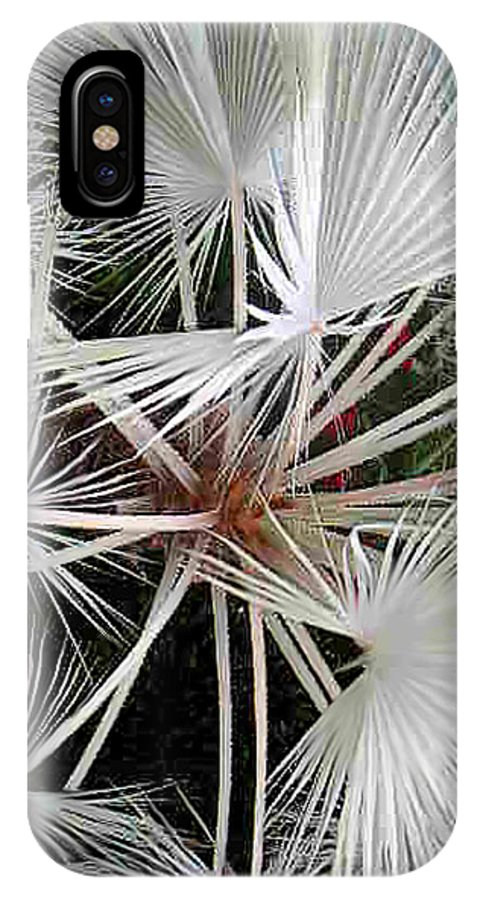 Nature IPhone X Case featuring the photograph Palm Wonderful by Lucyna A M Green