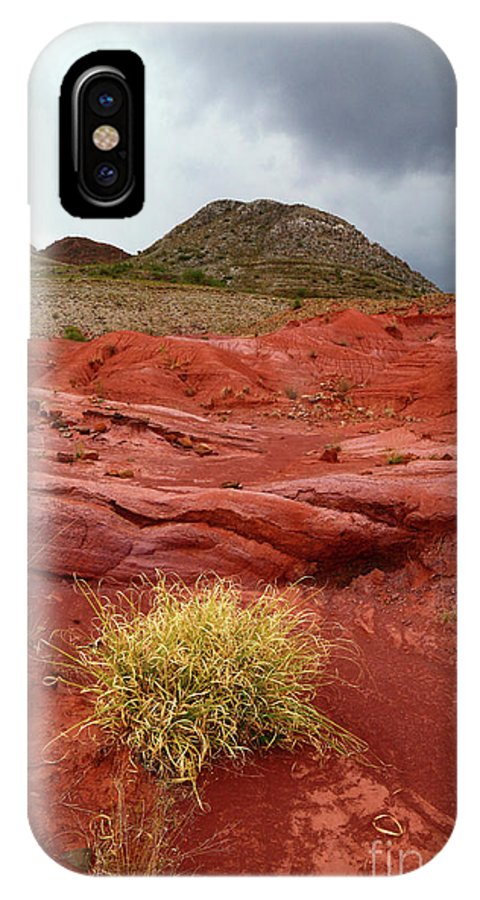 Bolivia IPhone X Case featuring the photograph Pampas Grass In The Desert Torotoro National Park Bolivia by James Brunker