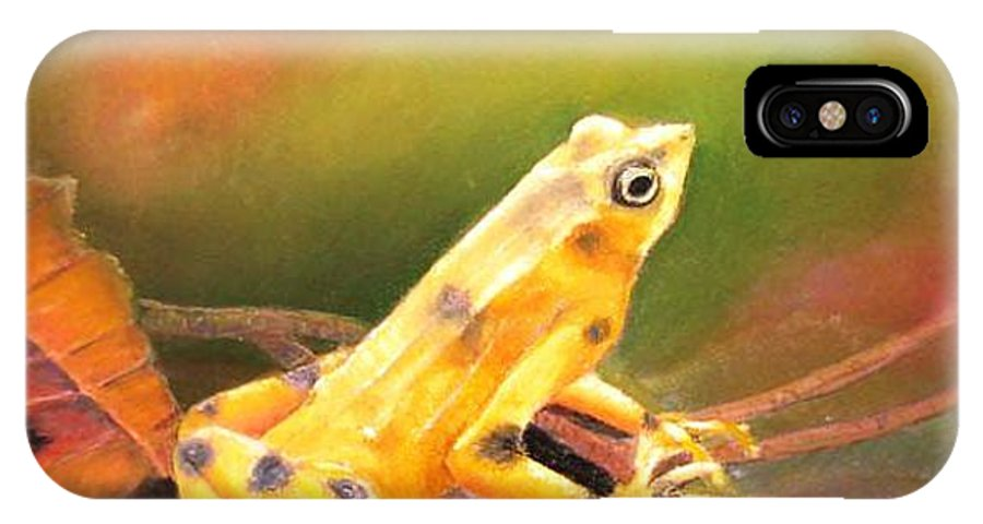 Endangered IPhone Case featuring the painting Panamenian Golden Frog by Ceci Watson